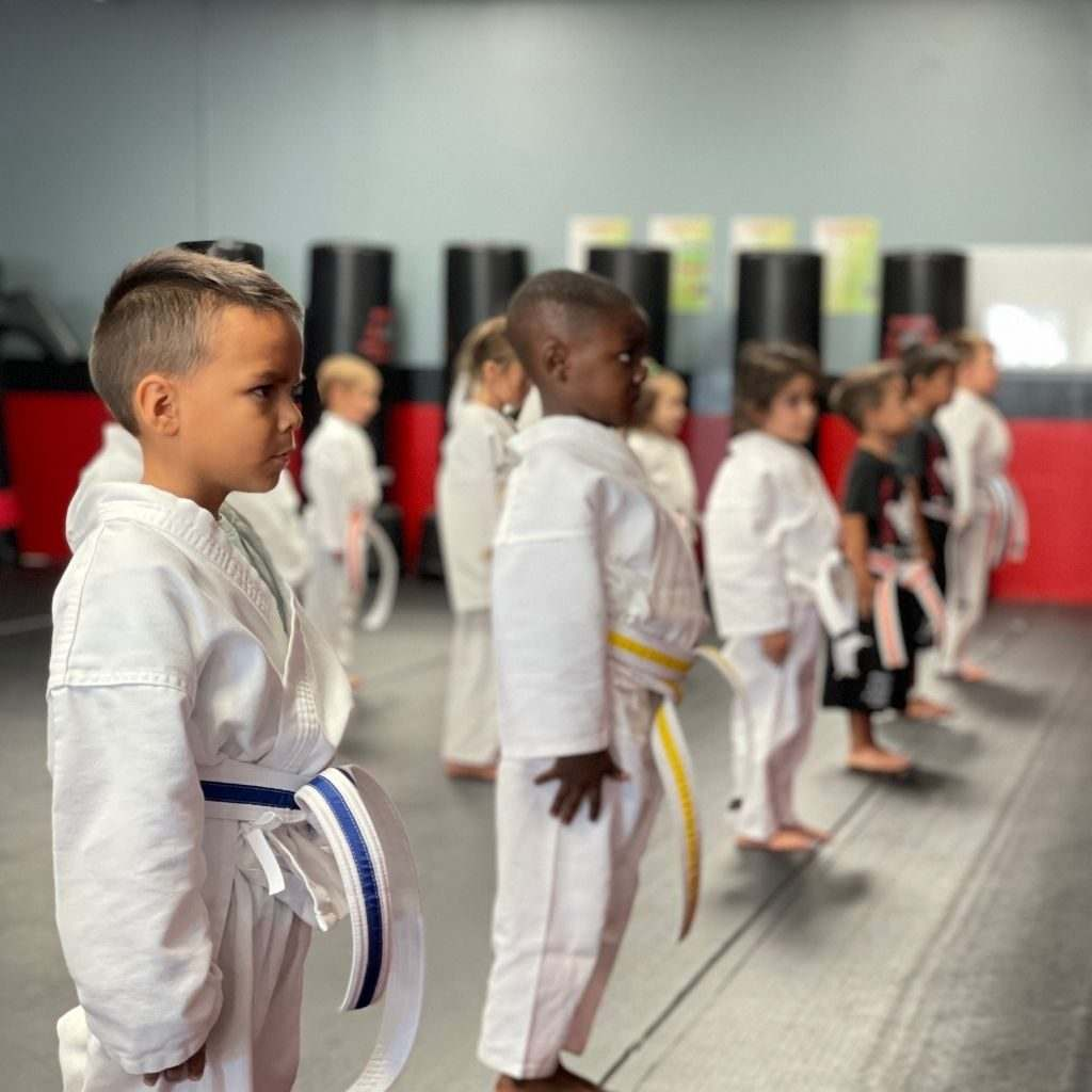 Untitled Design 4 1024x1024, Guido's Martial Arts Academy
